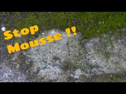 Comment Enlever La Mousse Sur Ma Terrasse Youtube En 2020 Mousse Astuces Terrasse Beton