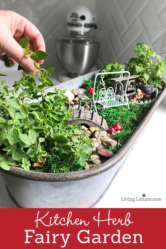 329 best images about fairy gardens on pinterest for How to make a fairy garden container