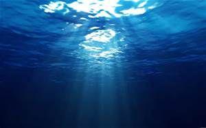 いつかは行ってみたい海の底。水は光があってこそ美しい造形を生み出すんだな。