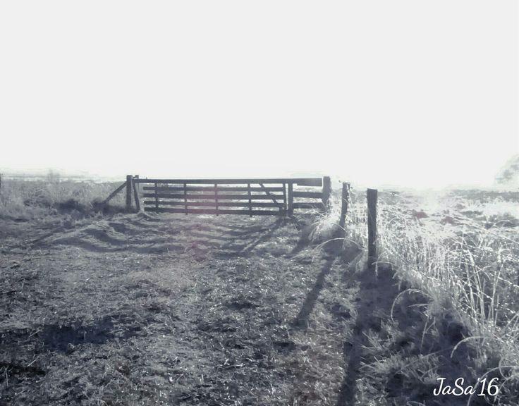 Wandelingetje in de winterzon @oostersebos