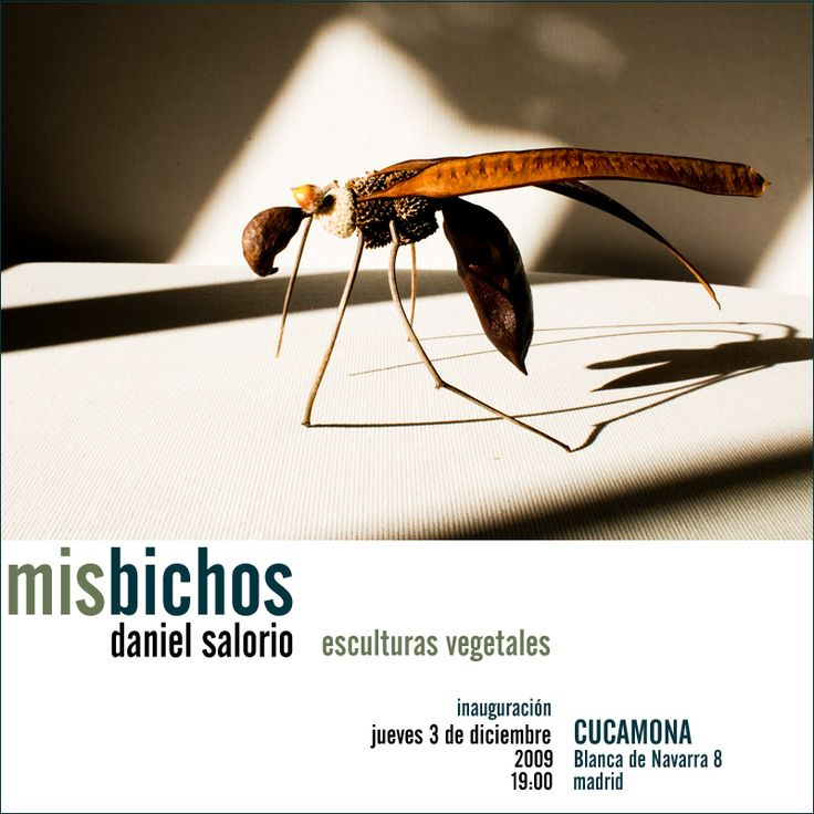 misbichos