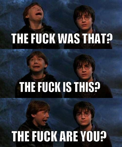 """Harry Potter Ron """"The Chamber of Secrets"""" The F*ck whas that?"""