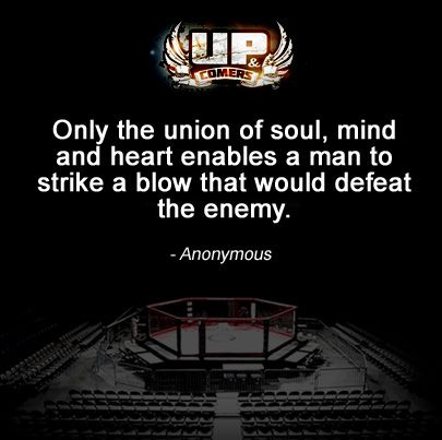 Mma Quotes Fascinating 56 Best Mma Quotes Imagesupc Unlimited On Pinterest  Martial . Inspiration Design