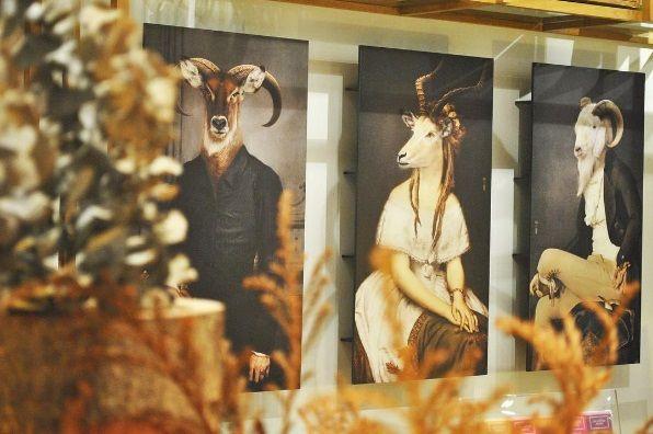 Bel Ami, Dantes & Rodolphe wall bookshelves by ibride.  #design #wall #storage #animal #funiture #ibride #cabinet #bookshelf #home #interior #decoration (photo @another_story_bangkok)