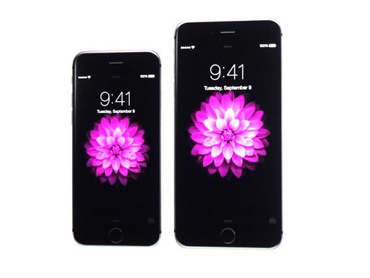 Apple iPhone 6 vs iPhone 6 Plus: Which One is Right for You?