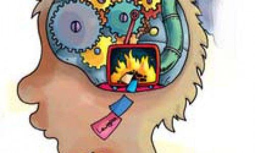 La neuroeducación llega a las aulas