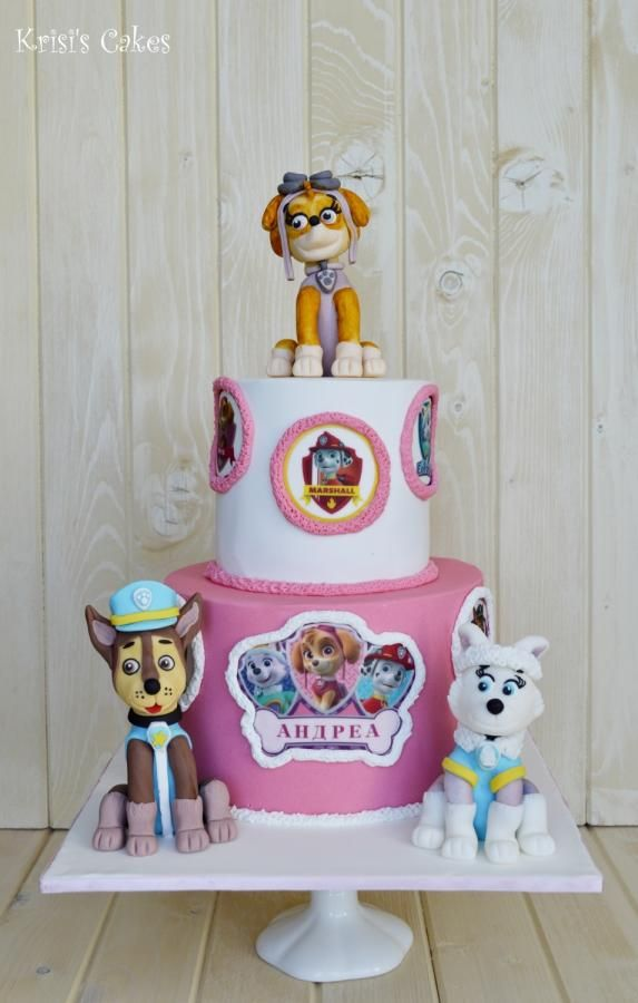 17 Best Images About Paw Patrol Cakes On Pinterest Cakes