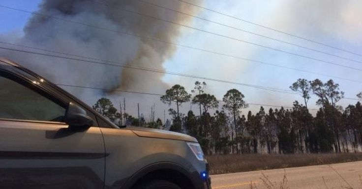 Η Φλόριντα καίγεται: 100 φωτιές μαίνονται στην πολιτεία