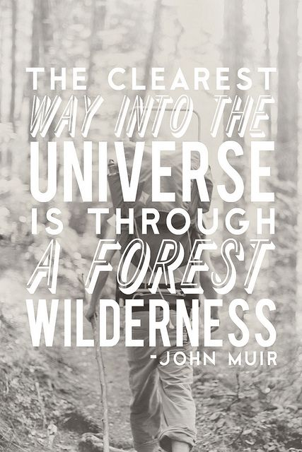 """""""The clearest way into the universe is through a forest wilderness"""" ~John Muir #quotes #outside #truth"""