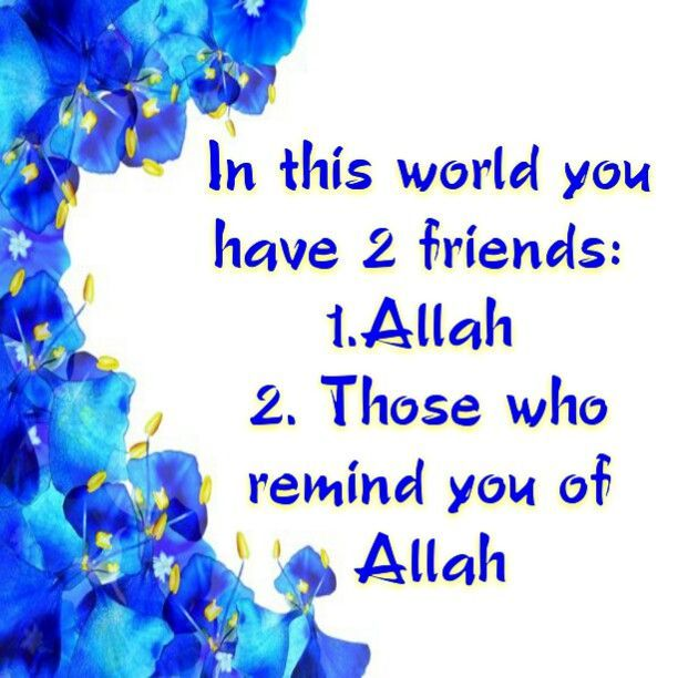 quotes about friendship in islam your friend is he who mdkush