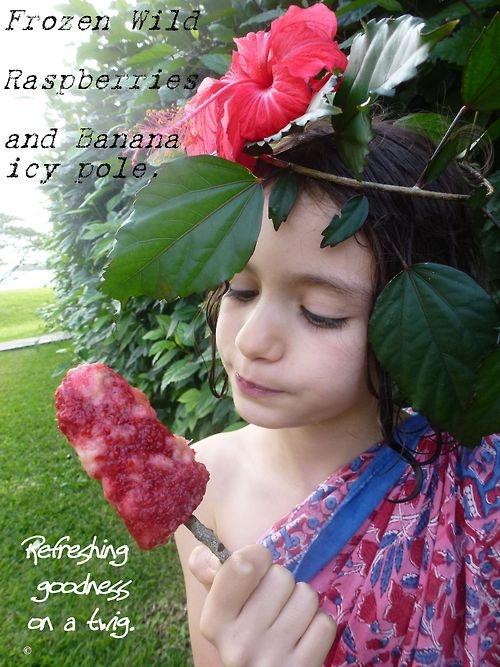 Frozen Wild Raspberry & Banana Icy Pole