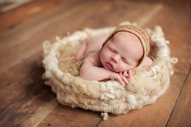Erin Tole Photography, nest by My New Love