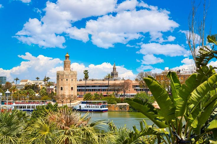 Sevilla! Op naar de zuiderse sfeer waar alles op't gemak z'n gangetje gaat en je enkel hoeft te denken aan sangria, tapas en in welk pittoresk plekje je nu eens zal stoppen. Het wordt een reis vol diversiteit op vlak van cultuur, geschiedenis, sfeer en keuken. Je gaat van de pure Andalusische sfeer in Jerez naar de grote havenstad Algeciras, het imposante Granada in de bergen, het mysterieuze Córdoba en het rijke Sevilla.