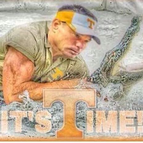 Florida vs Tennessee 2014