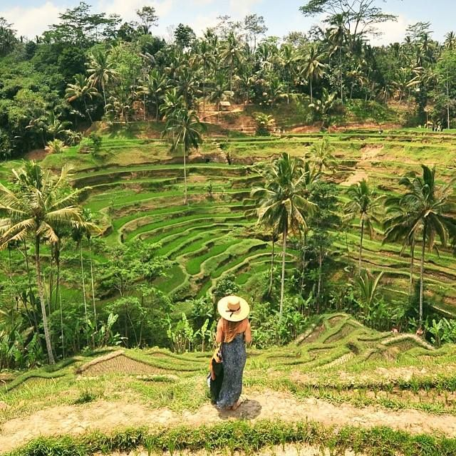 Liz...wrz.2015r..(Re)visiting the Tegallalang rice terraces in Ubud, Bali.