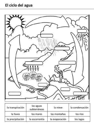 Water Cycle Worksheet Middle School   Water cycle ...