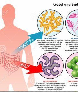 NGS(Next generation sequencing) GMA(Gut Microbiome Analysis) 마이크로바이옴 장내 세균 분석 한국의과학연구원 GMA : Gut Microbiome Analysis NGS : Next generation sequencing 인체에 기생하는 미생물군 유전자 전체를 말하는 Microbiome 분석에 활용되는 것을 G..