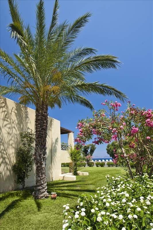 Gardens at #Kipriotis #Maris #Suites - #KipriotisHotels #Kos #Kos2014 #KosIsland #Greece #Greece2014 #VisitGreece #GreekSummer #Greece_Is_Awesome #GreeceIsland #GreeceIslands #Greece_Nature #Summer #Summer2014 #Summer14 #SummerTime #SummerFun #SummerDays #SummerWeather #SummerVacation #SummerHoliday #SummerHolidays #SummerLife #SummerParadise #Holiday #Holidays #HolidaySeason #HolidayFun #Vacation #Vacations #VacationTime #Vacation2014 #VacationMode #VacationLife #Vacationing #VacationReady