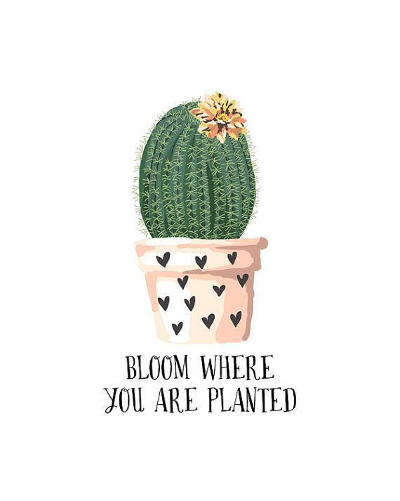 Bloom Where You Are Planted - Quote Print - Succulent Print - Cactus Art - Botanical Print - Botanical Decor - DIGITAL FILE ★NO PHYSICAL ITEM WILL BE SENT. You will receive a high resolution 8x10 ready-to-print file. Print it using your home printer, or bring it to a local or online printing lab to do it for you. You will be referred to an instant download link shortly after your purchase. ★Do you want a PRINTED DESIGN that is SHIPPED to you? Visit this link: https://www.etsy.com...