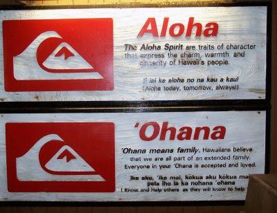 Afbeeldingsresultaat voor ohana meaning