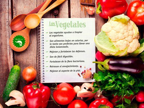Propiedades de los vegetales.