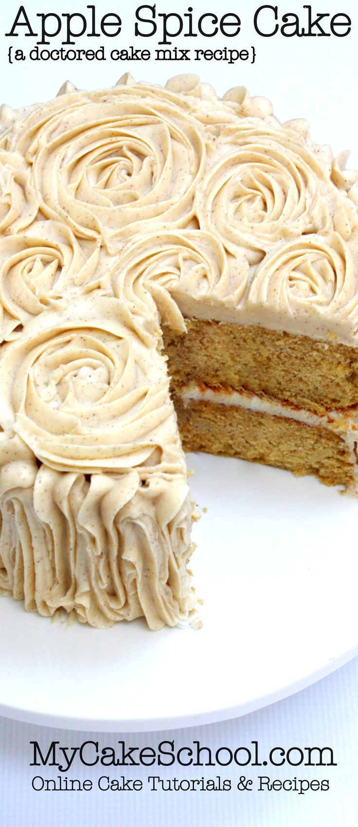 Amazing Apple Spice Cake! This recipe starts with a cake mix. So simple and delicious! MyCakeSchool.com Cake Recipes and Tutorials!