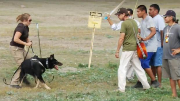 MORTON COUNTY, N.D. — A law enforcement consultant who trains police dogs is among those condemning the use of guard dogs at a pipeline protest site and says she plans to file a complaint about the dogs' owner.Jonni Joyce of Martin, S.D., who has trained professional dogs since 1988, watched video...