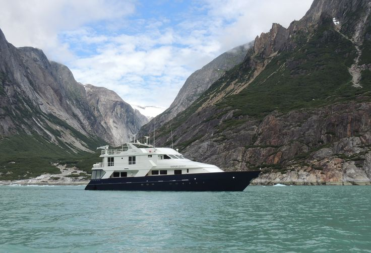 CRUZEIRO   Un-Cruise apresenta seu roteiro pelas águas geladas do Alasca   Revista Styllus
