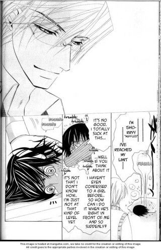 Junjou Romantica - Usagi-san and Misaki