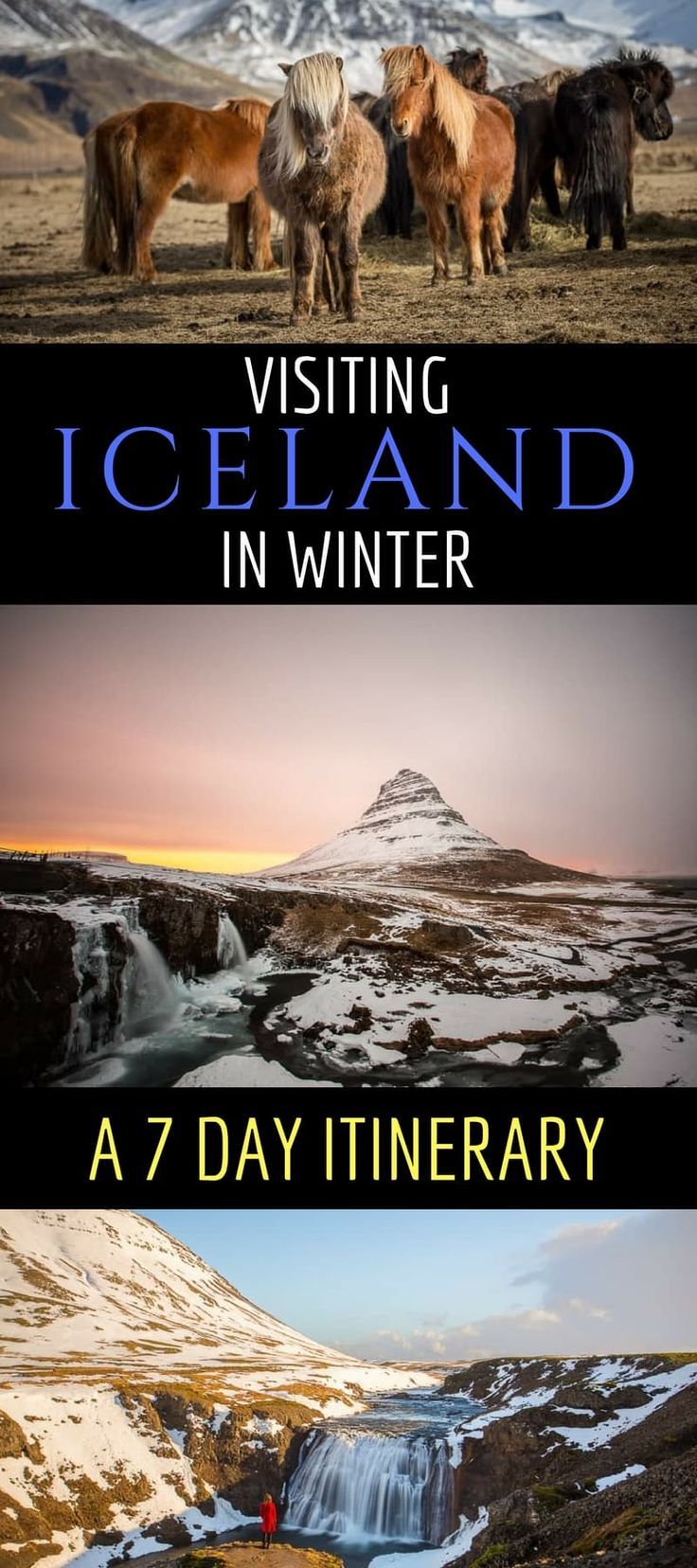 A comprehensive guide and 1 week itinerary to visiting Iceland in winter. The 7 day guide gives detailed day-to-day suggestions and a a guide if you are self driving. Also gives packing tips, budget tips, and tour tips. #Iceland #Icelandtrip #Icelanditinerary #wintertravel #travel #Icelandtravel