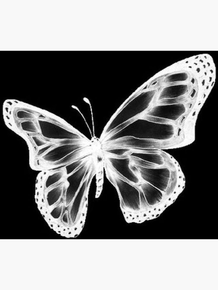 y2k butterfly Poster by sabrinamerg in 2021 | Art collage ...