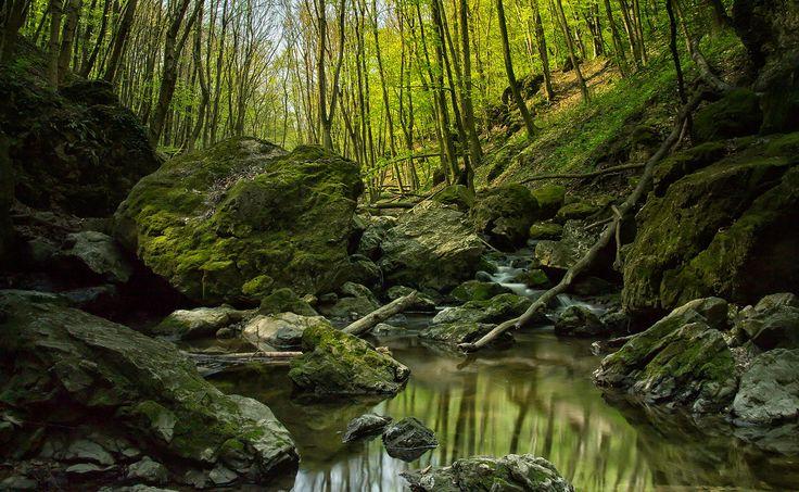 Cuha creek by Tamás Hauk on 500px