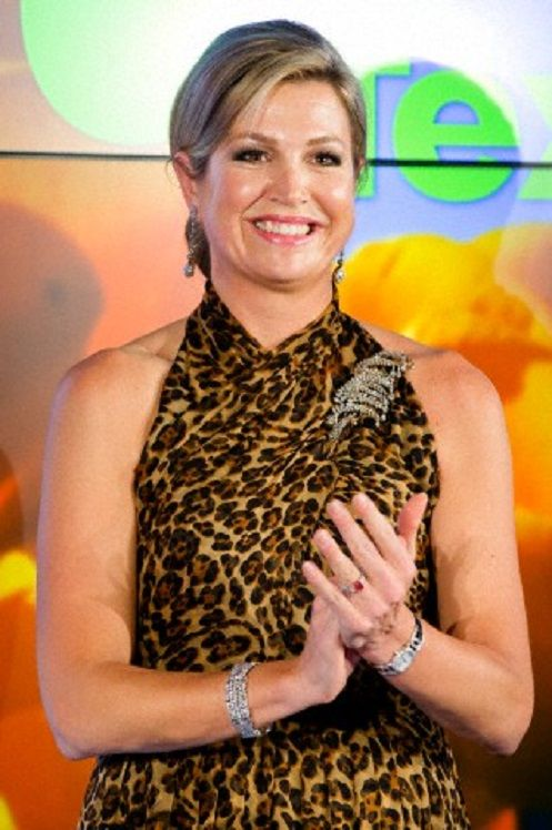Dutch Queen Maxima attends the King Willem 1 Award 2014 in Amsterdam, The Netherlands