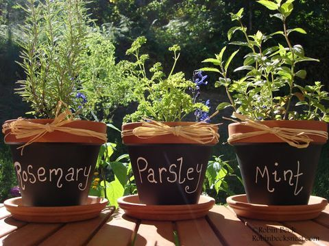 ComfyDwelling.com » Blog Archive » 17 Simple DIY Herb Pots For Indoors And Outdoors