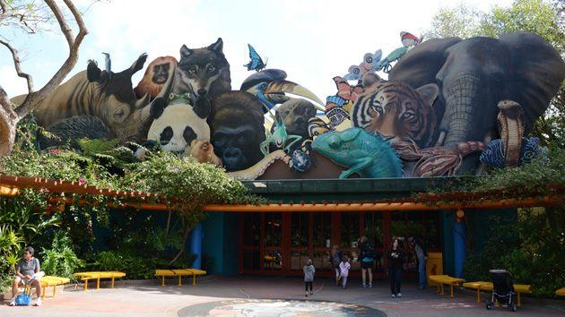 Top 5 Hidden Gems at Disney's Animal Kingdom | wdw info.com