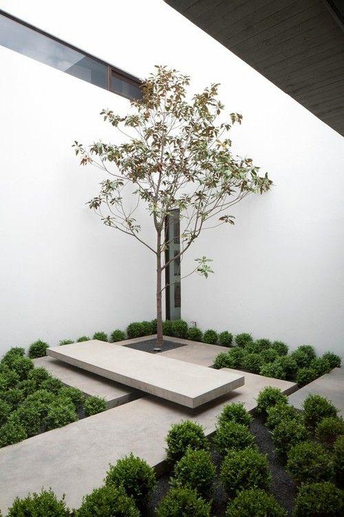 Jorge Figueroa Asociados. belijning, niveauverschillen, ommuurde tuin, lage begroeiing versus boompje