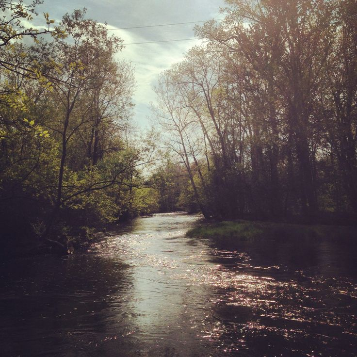17 best images about scottsville ny on pinterest the for Trout fishing at night