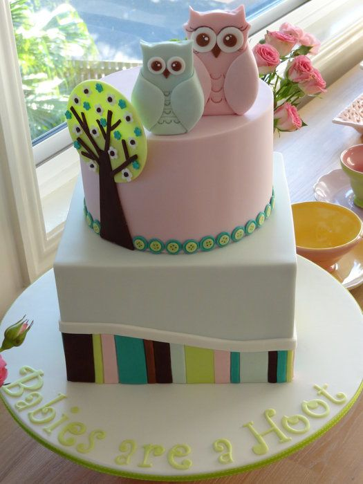 cute owl baby shower cake! Would be super cute for our adoption! With the two owls!