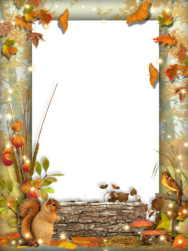 Autumn-Photo-Frame-Squirrel-in-the-Forest.png (959×1280)