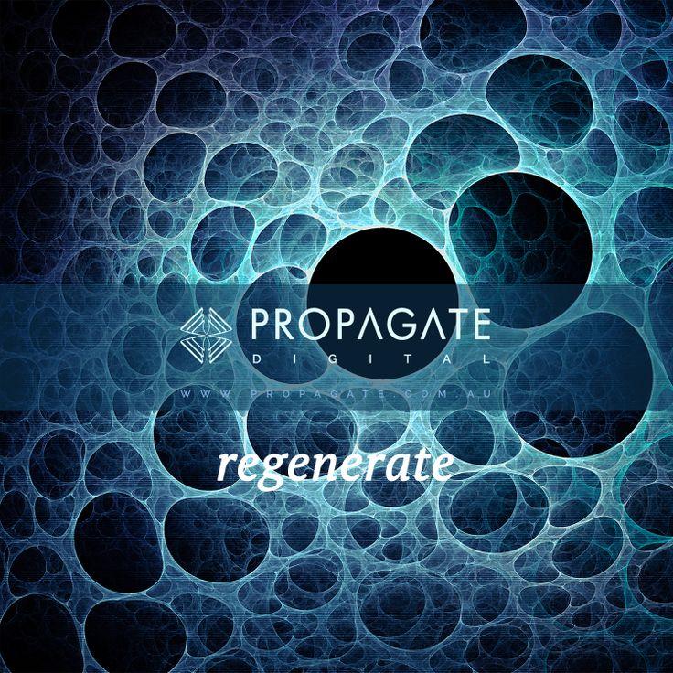 Propagate - Sponge - Regenerate