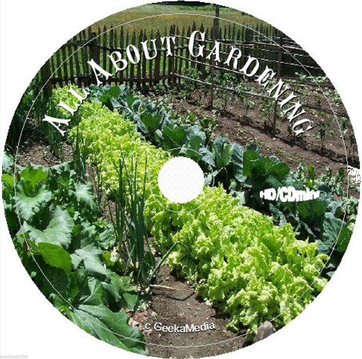 1000 Images About Home Garden Books Vegetable And Flower Gardening On Pinterest For Dummies