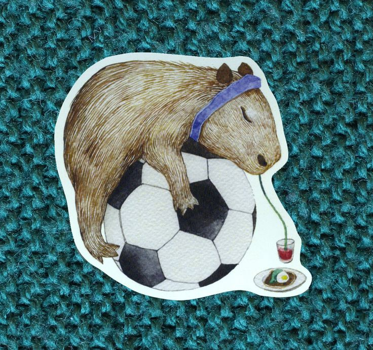 Tired baby capybara sticker sleeping on a football ball drinking juice.