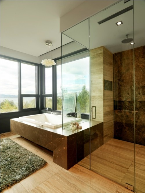Bathroom with a view. Love how the shower and tub fit together.