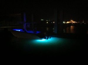 Dual color LED transom boat lights. 12 blue, 12 green. These marine LED lights are incredibly durable, corrosion proof, extremely bright, compact & very efficient.