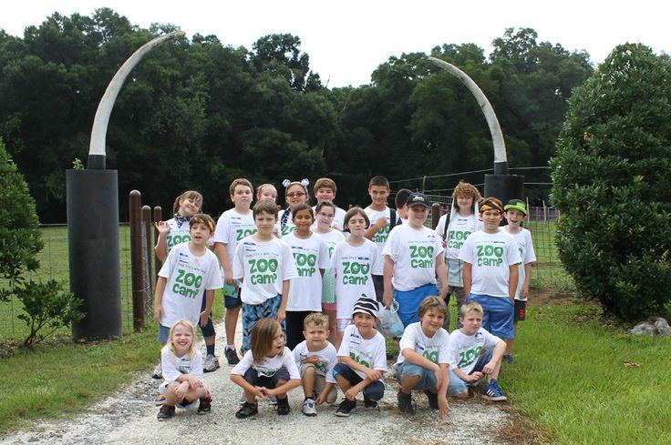 Zoo camp 2015