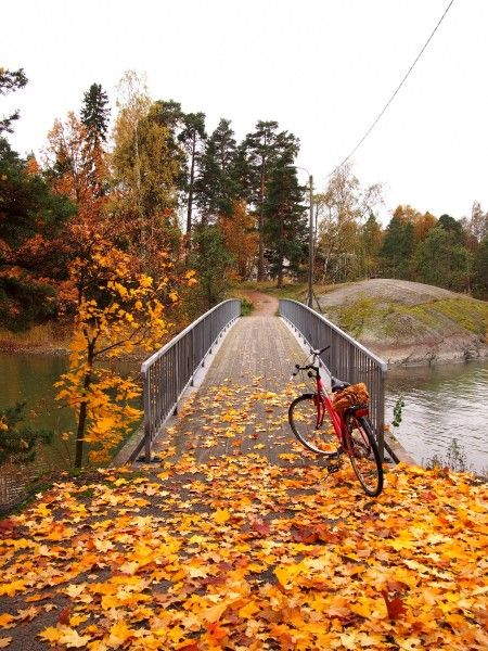 Cycling is a great way of seeing more of #Helsinki in #Autumn. There are many good cycling routes in the city, read more about some here. Photo: Mia Halmén #cycling #bike #explore