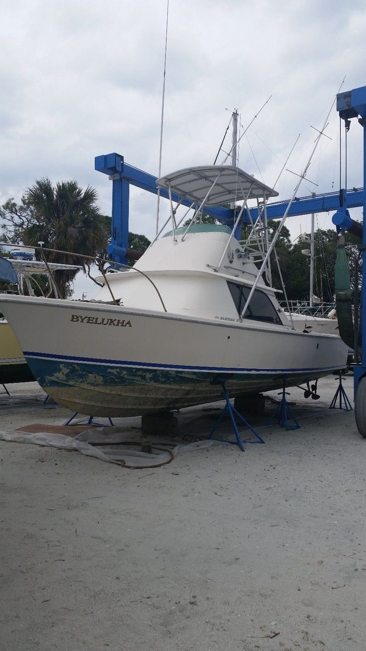 Ebay Boats Florida >> 50 Best Bertram V 31 Images On Pinterest Boats Boating And