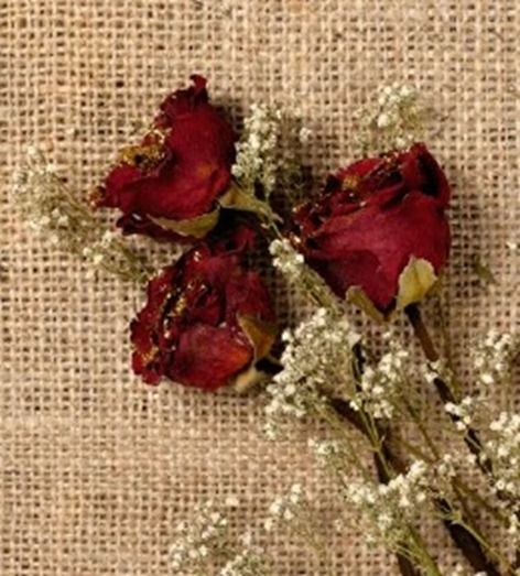 Secar rosas