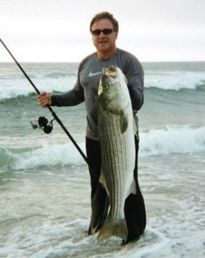 51 best striped bass images on pinterest bass fishing for Striped bass fishing tips