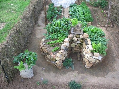 Keyhole Bed  The Center Is The Compost Bin, And Water Poured On Top Seeps